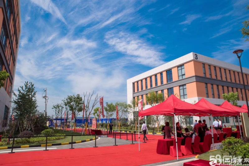 桃花工业园独栋厂房层高7.9米出售自由分割独立产权