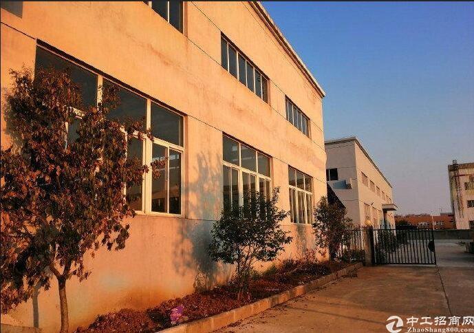 新密1800㎡独栋厂房出租、标准化厂房、正规园区