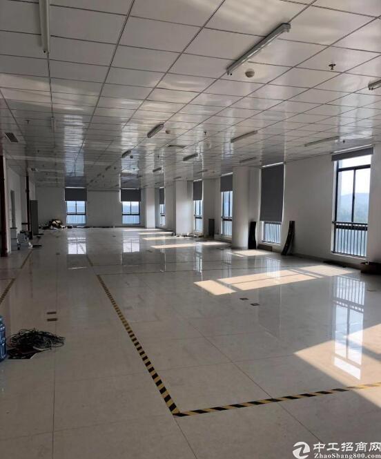 新密西大街800平米厂房出租,标准厂房