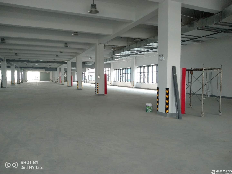 新建5.5万平米高标准厂房,开发商直租-图3