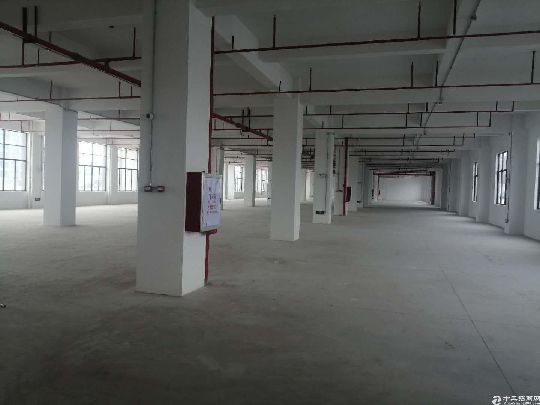 全新厂房2100平方,带消防喷淋,原房东出租,2部3吨电梯,