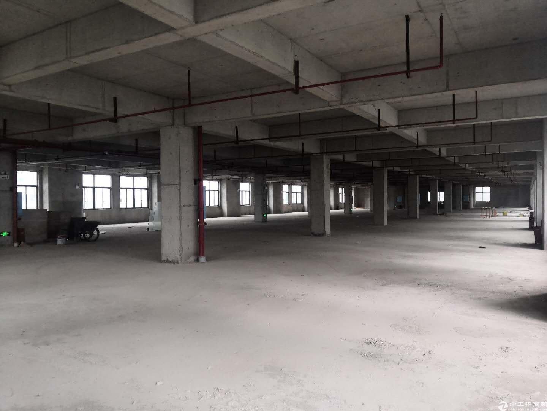 3000平米标准厂房出租