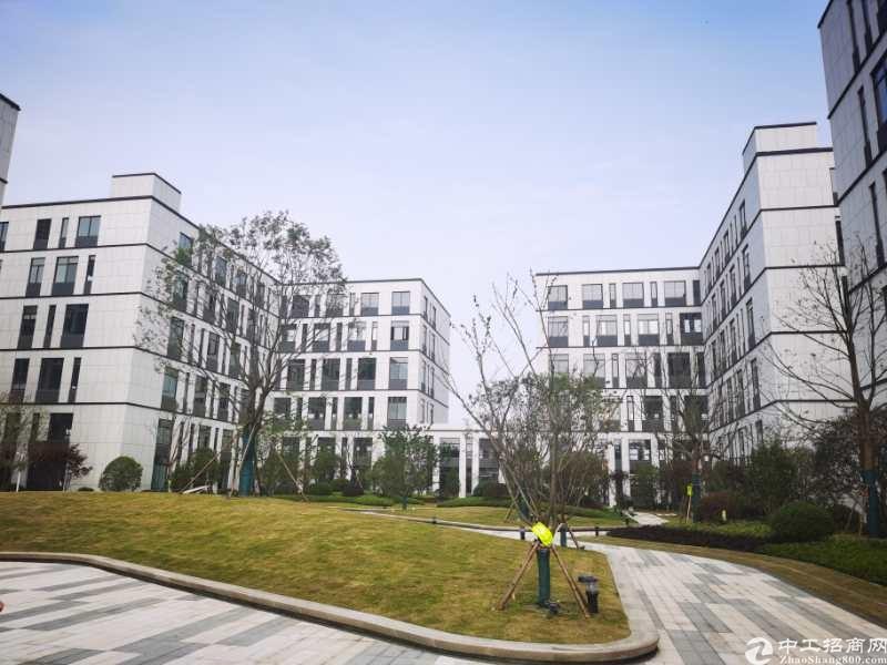 嘉兴嘉善国家级开发区厂房2400平米出售|50年产权