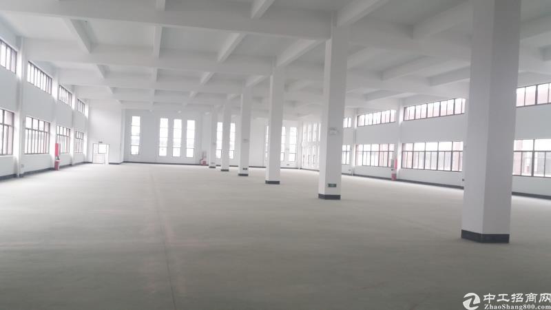 甪直大气办公研发厂房,518平800平直招