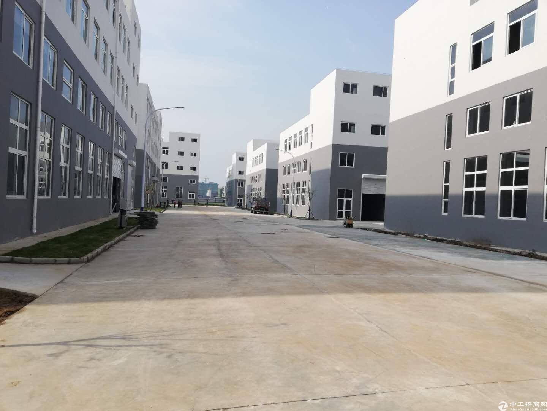 出售厂房50年产权双证首付3.5成7.8米层高