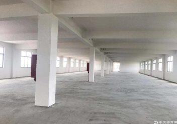 肇庆白下高新产业园楼上1500平标准厂房招租图片1