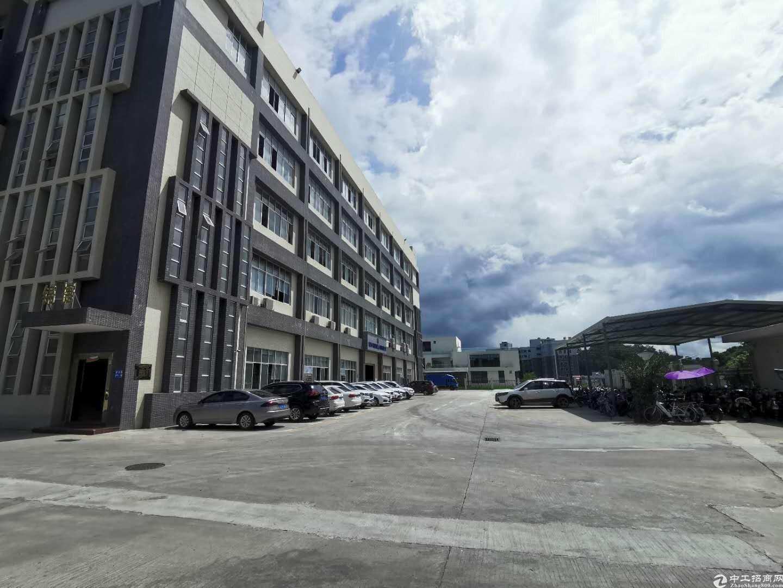 新出坂田第三工业区800平楼上厂房出租精装修可做电商仓库