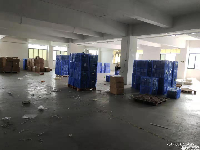 番禺南村园区形象好带装修1400方仓库厂房办公出租。
