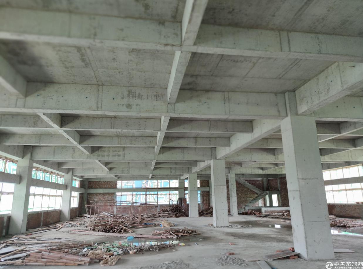 江门新会4000平独栋厂房出售6层50年独立产权