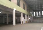 工业区新出独院标准厂房整园出租