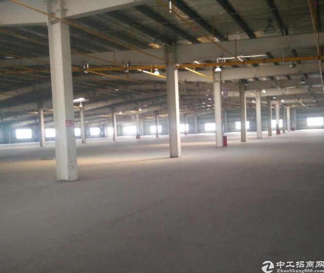 新会中开高速边10米高钢结构9000平方出售