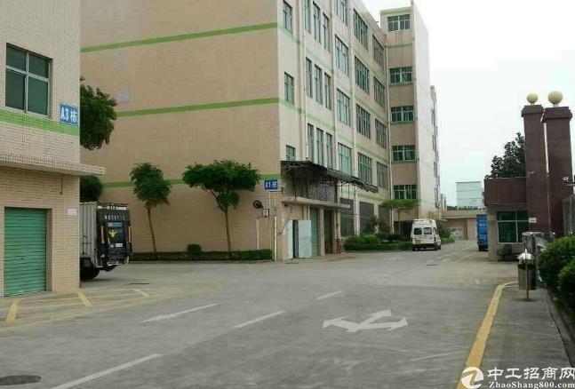 龙岗区布吉丹竹头附近新出520平带办公室厂房仓库出租