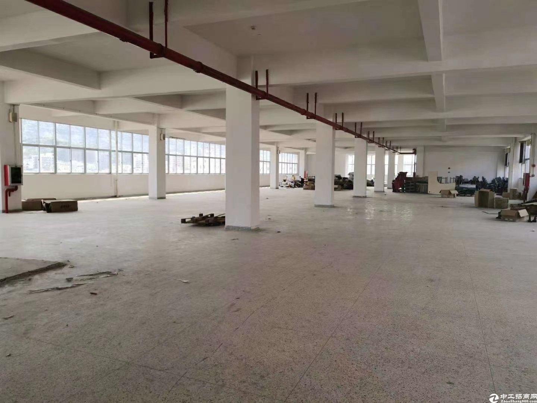 龙话大浪原房东园区2000平精装超低价仓库厂房可分租出租