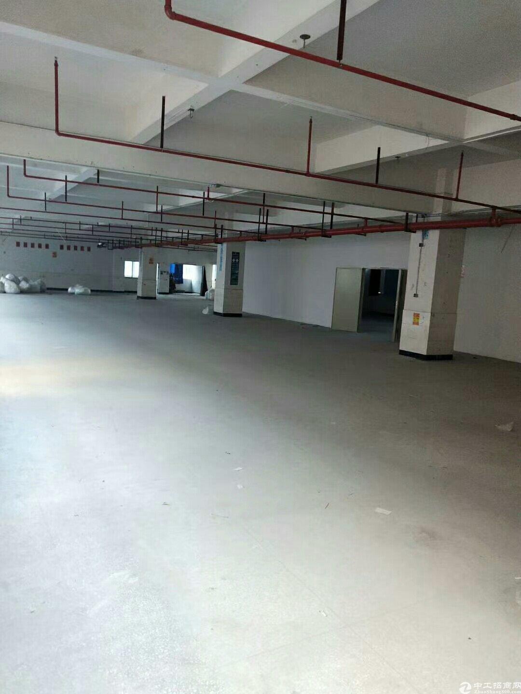 深圳龙岗布吉丹平快速路口新出楼上520平园区形象好厂房出租