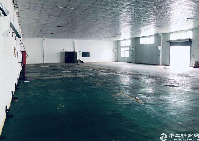 龙华大浪原房东工业园精装修仓库厂房出租1500平可分租