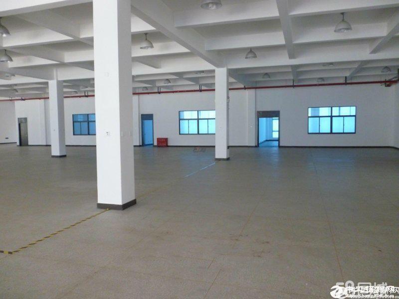 龙岗区龙东一楼1100平米厂房仓库出租!空地大可分租.