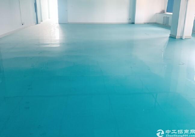 龙岗坪地原房東独院红本厂房仓库2000平高5米出租精装修