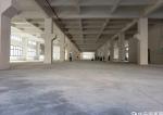 高陵全新红本厂房出售6000平方大小可分割独立产权