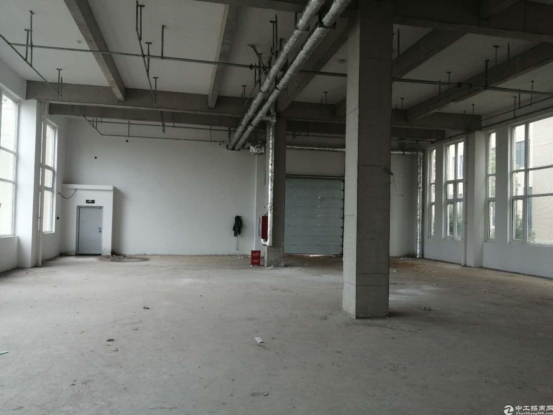 玉皇岭工业园厂房首次出租价格便宜
