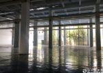 坪山大工业区,独栋厂房出租3000平方,层高9米,可分租