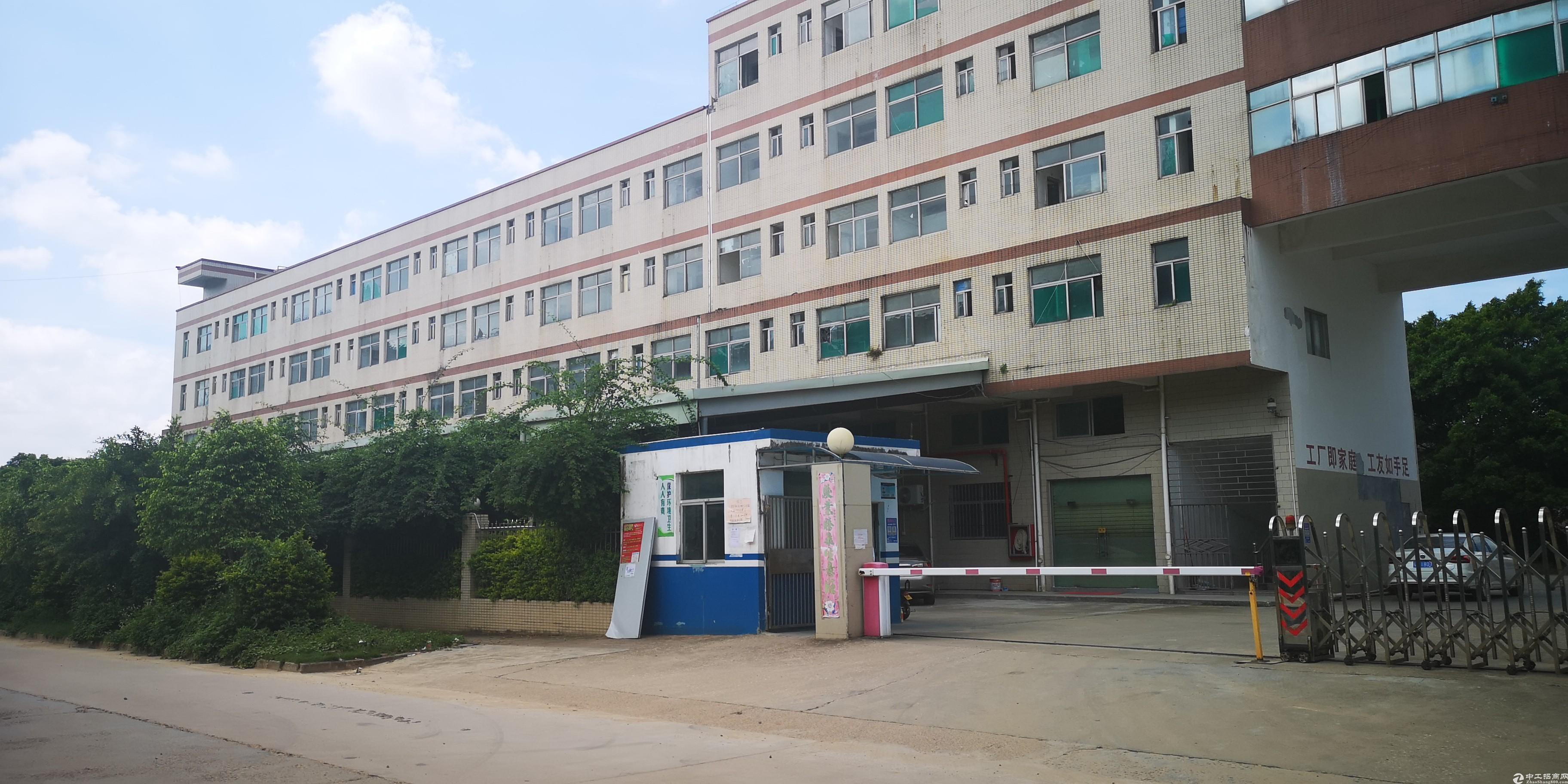 龙岗坂田2200平厂房仓库出租,可分租带装修可办公可办环评