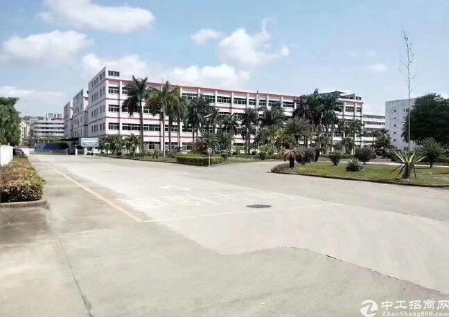 龙城街道原房东大型工业园17万平方厂房仓库办公楼招租,原房东
