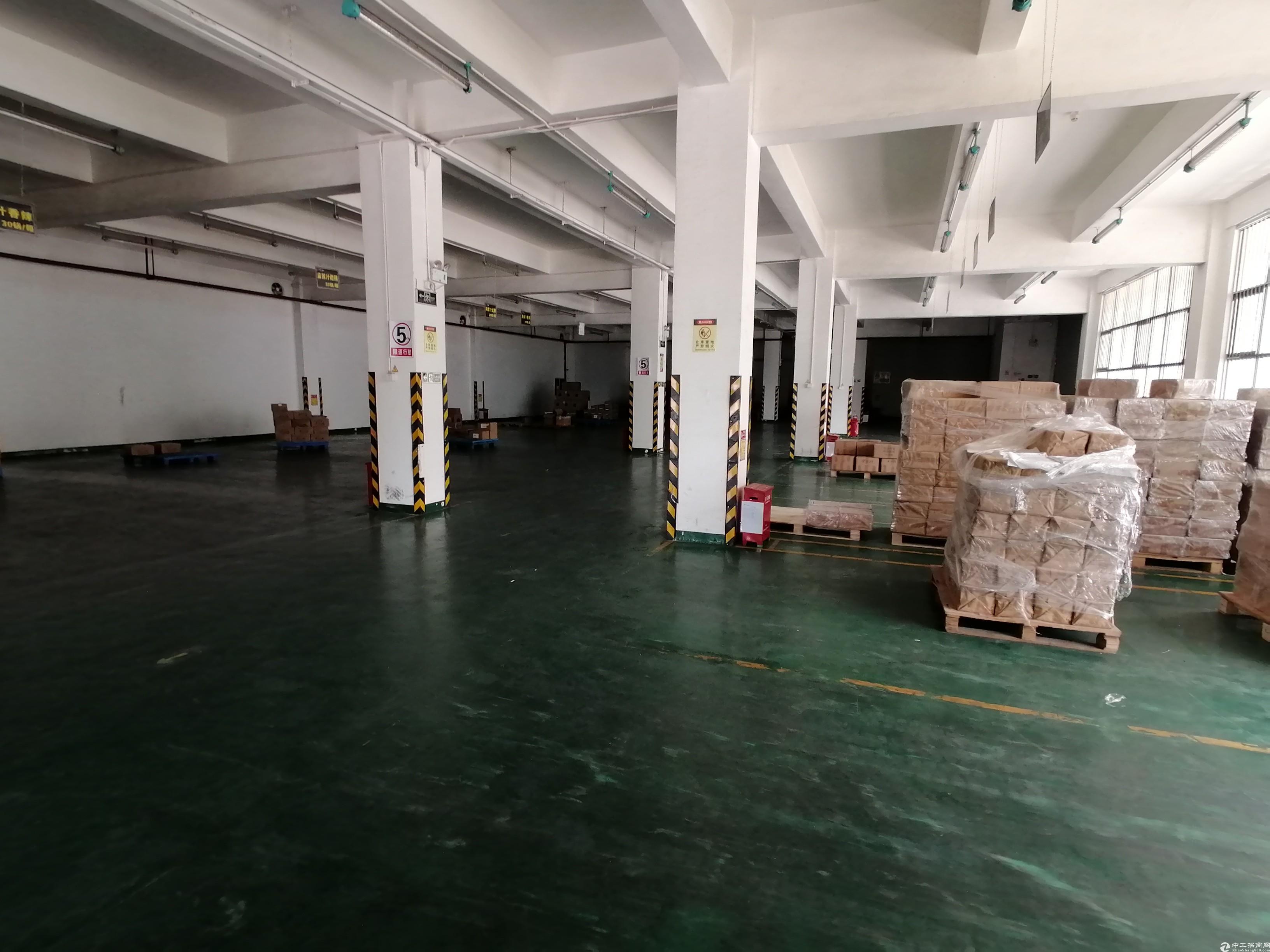 平湖新木工业园1500平一楼厂房出租带600平冷冻仓库