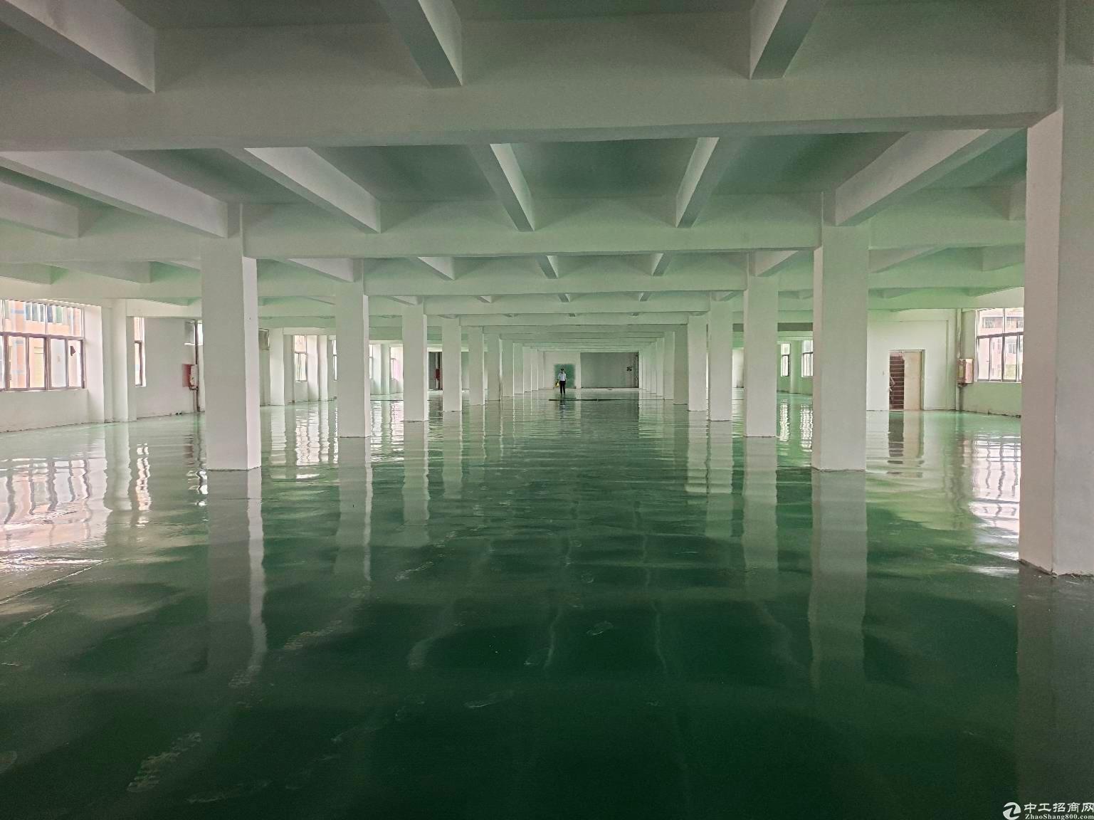 龙岗周边3万平米厂房仓库带装修出租,可分租可环评空地大