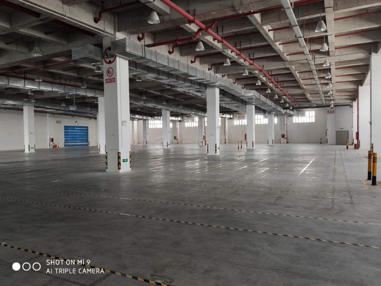 南山前海保税仓4500平米仓库出租,卸货平台!层高8米
