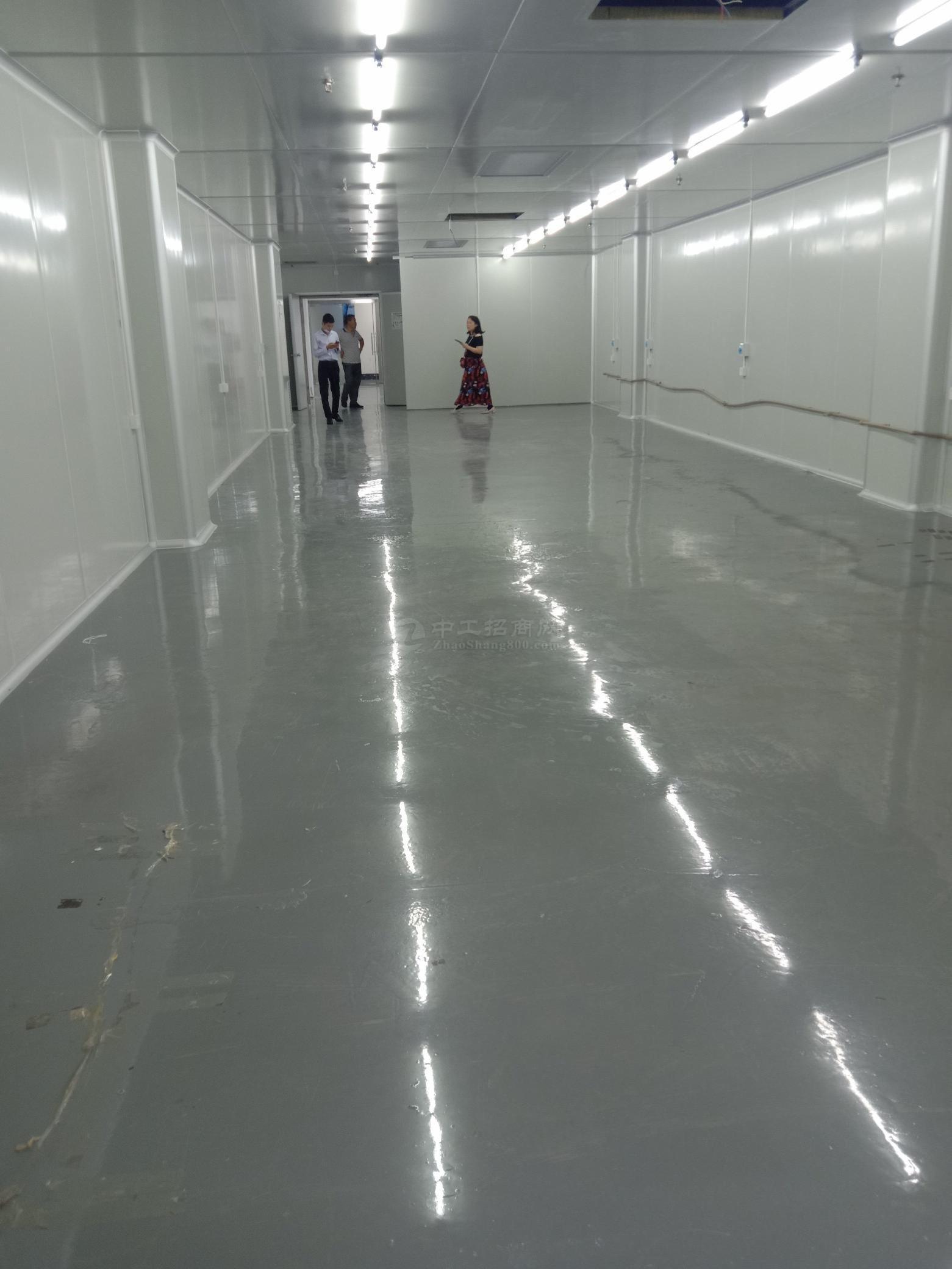 大浪360平花园式厂房仓库出租,带无尘车间带红本二部三吨货梯