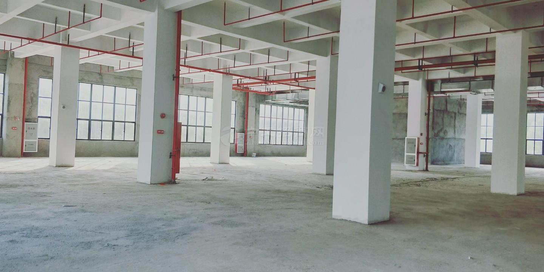 高新区经八路厂房仓库招租2800平起租