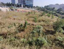 深圳布吉李朗附近8000平红本地皮出售,可报建