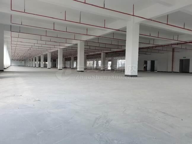 大通工业园厂房出租,交通便利,可做仓库,生产,办公。