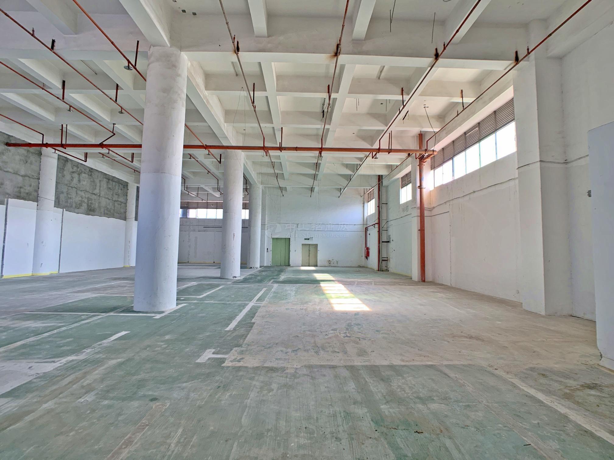 西乡鹤洲新出层高7米厂房仓库出租