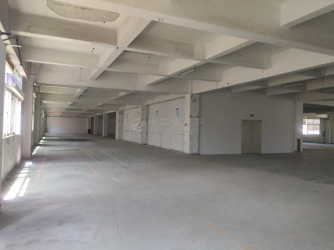 石岩仓库厂房有消防喷淋两部三吨电梯空地大交通便利