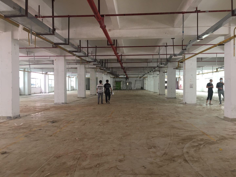 平湖富民工业区一楼5千平原房东红本仓库厂房出租分租消防喷淋