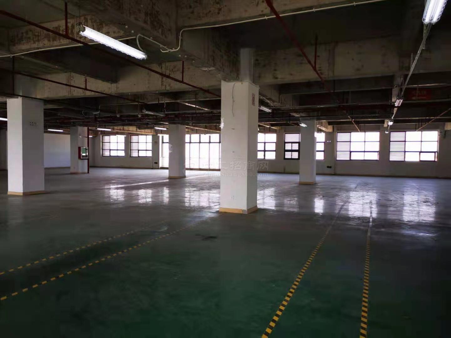 布吉工业区研发办公厂房2000平仓库办公出租!可办环评可分租
