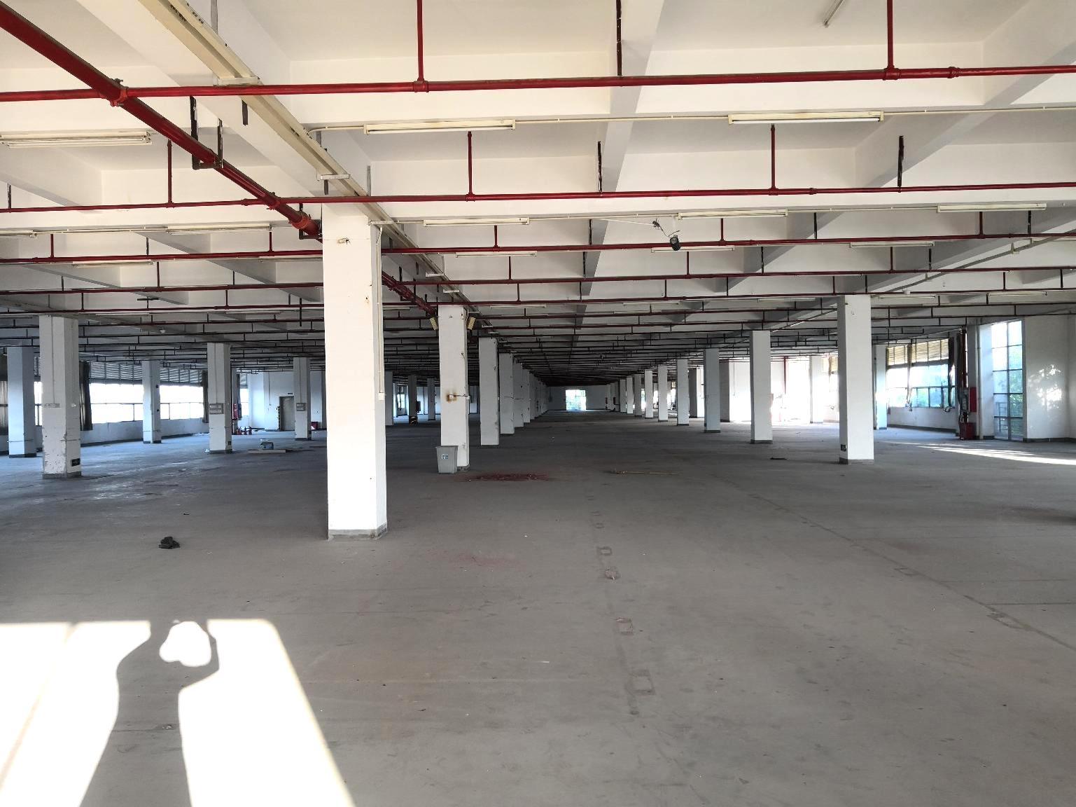高速口工业园一楼8000平红本厂房出租可分租仓库出租空地大