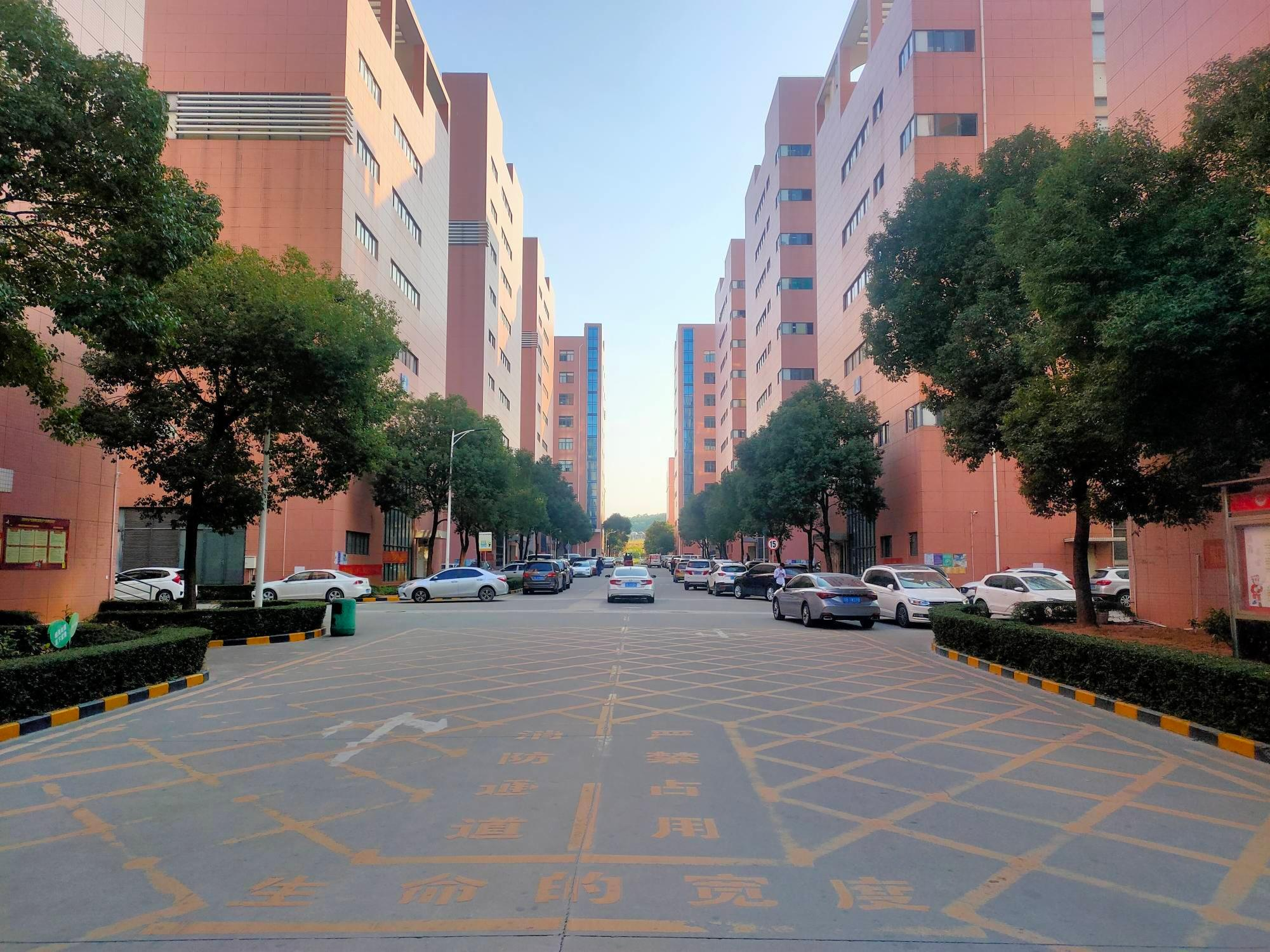 沙井地铁口红本工业园精装修1600平厂房出租可分租仓库出租